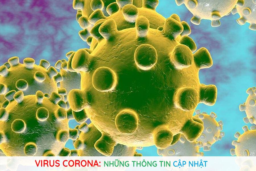 Who Cong Bo 21 Thong Tin Quan Trong Nhat Ve Virus Corona Bat Cu Ai Cung Can Nam Ro 2