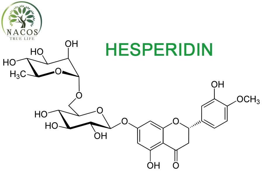 Chat Hesperidin