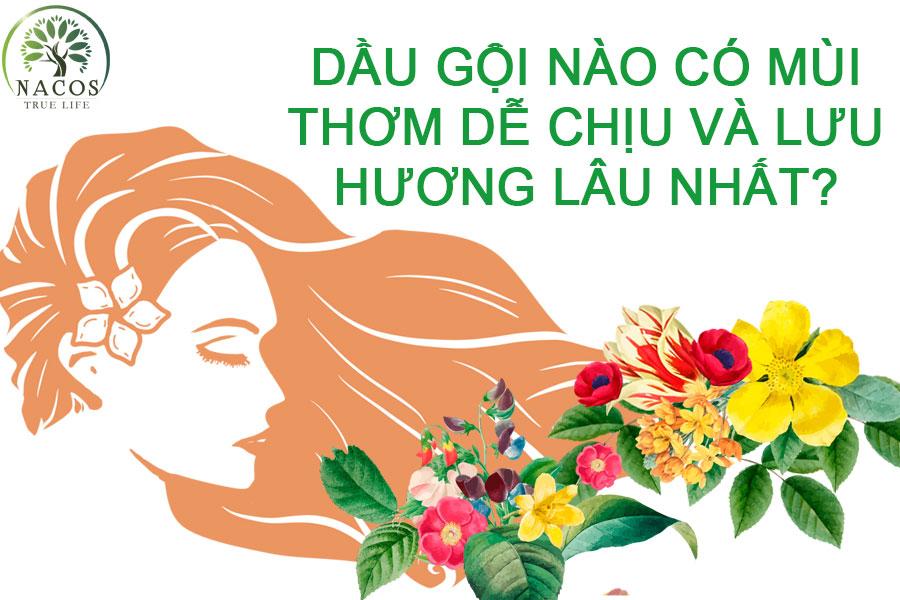 Dau Goi Nao Co Mui Thom Va Luu Huong Lau Nhat