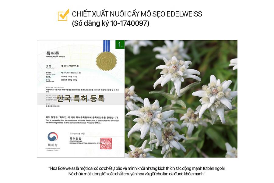 Chiet Xuat Nuoi Cay Mo Seo