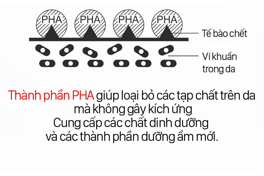 Thanh Phan Pha Mat Na Ngu Mat Vita C 1